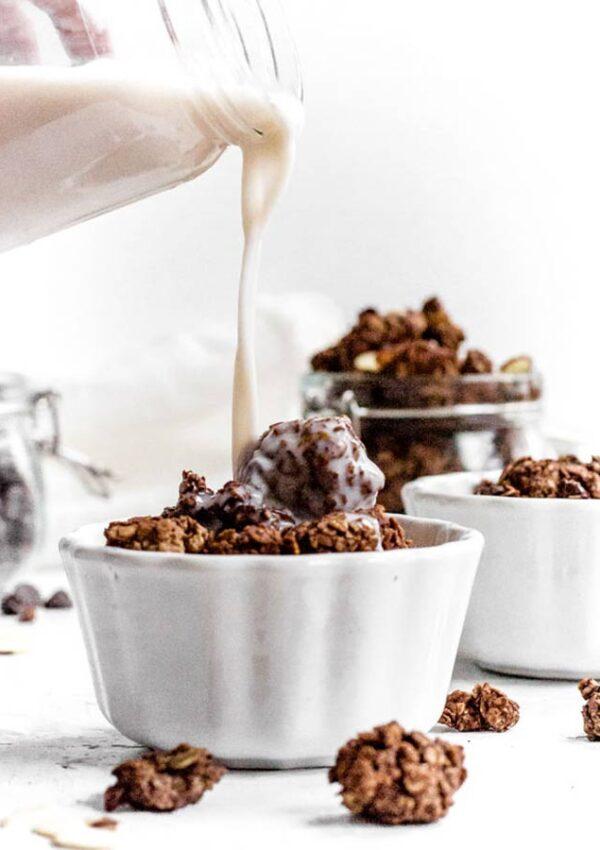 Chocolate Almond Butter Granola Clusters (Vegan & GF)