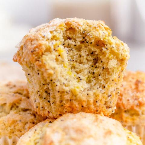 fluffy vegan lemon poppyseed muffin