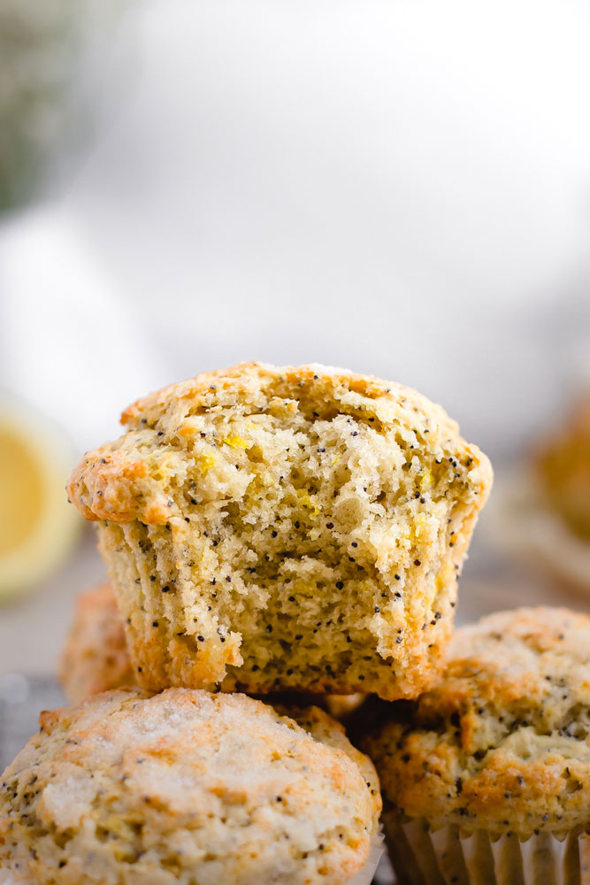 detail of the muffin texture