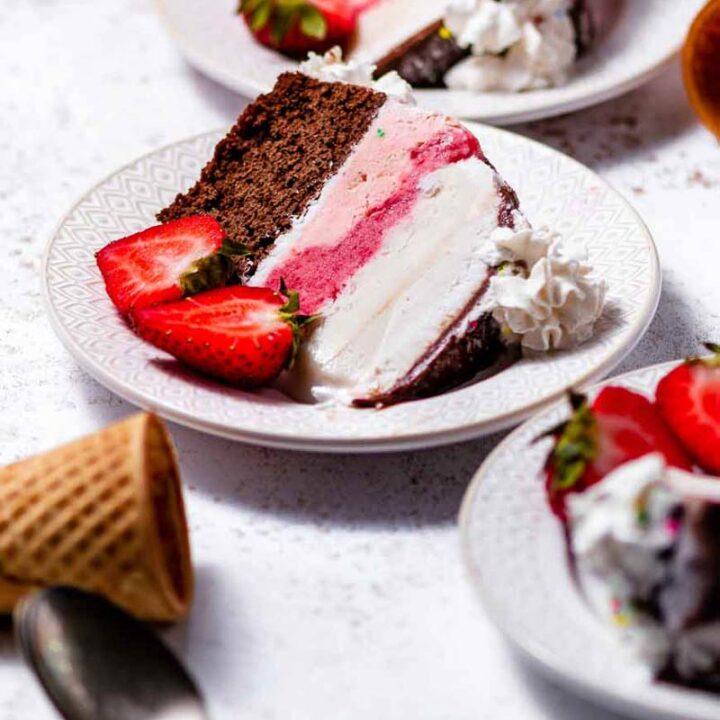 vegan Neapolitan ice cream cake